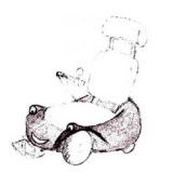 Wizzybug design drawing
