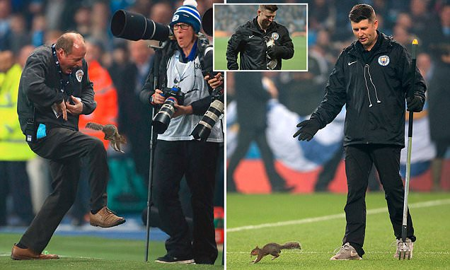 A squirrel refused to leave the pitch at Etihad Stadium