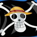 Straw Hat Pirates Portrait