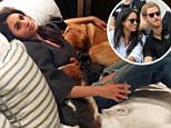 Meghan Markle has further fuelled rumours that she is gearing up to move in with Prince Harry as she prepares to bring her beloved dogs to the UK.