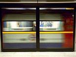 Tube train doors