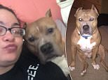 Buster, a pit bull, attacked two other pit bulls and then attacked a mother and sister at a Florida home