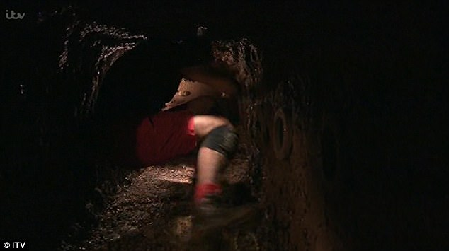 Disbelief: Scrambling desperately down the tunnel, Amir admitted: 'I can't do it, I'm sorry', and shouted: 'I'm A Celebrity…Get Me Out Of Here!