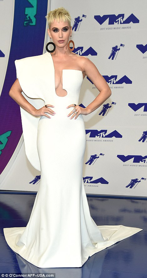French designer: The blonde beauty looked stunning in the gown by French fashion designer Stephane Rolland