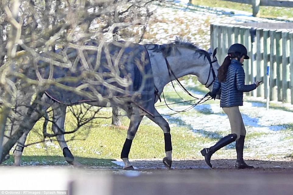 Romy Lauer bears a striking resemblance to her mother as she walks her gorgeous white horse into the ring on Sunday afternoon