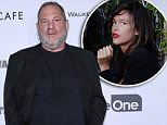 Harvey Weinstein, left, is being investigated for raping Paz de la Huerta twice in 2010