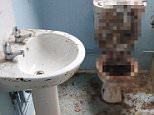 Britain's most extreme cleaner easily tackled a three-foot mountain of human poo piled on top of a toilet - because he has no sense of smell