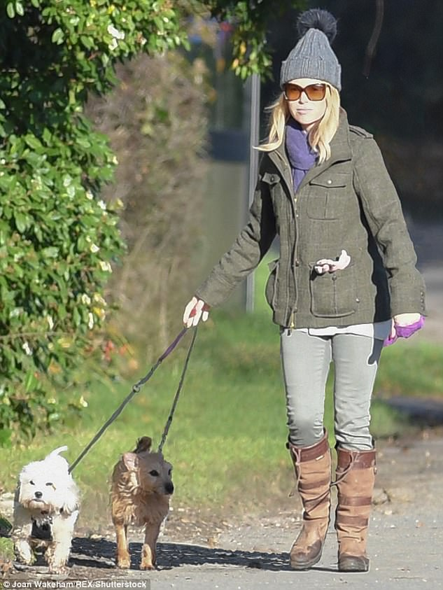 Different look: Amanda Holden, 46, looked worlds away from her Britain's Got Talent glamour as she walked her pooches Rudie and Buddy in idyllic Cotswolds countryside on Saturday