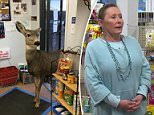 A doe came into the store and looked around before Jones fed it a peanut bar in an effort to get it out the store