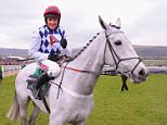 Triolo D'Alene, pictured here with Barry Geraghty was a special friend of fellow stablemate Simonsig until the horse's untimely death