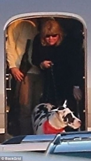 Happy time: Taylor Swift's mother Andrea looked to be in good spirits as she got off of the airplane