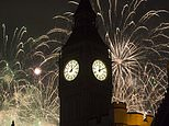 Fireworks light up the sky over Parliament in central London during the New Year celebrations (Ben Stevens/PA)