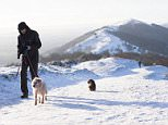 A dog walker was spotted taking his two pets out for a walk this morning in the Malvern Hills in Worcestershire as snow continued to cover parts of the country