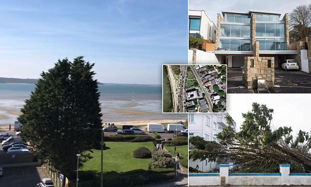 Sandbanks residents see Storm Eleanor add to home value