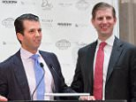 President Donald Trump doesn't think much of the intellectual abilities of his two sons Eric and Don Jr., according to new claims made in the controversial Fire and Fury book
