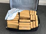 The drugs were found packed into 15 suitcases discovered on the flight from Colombia (Border Force/PA)