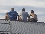 A heartbroken daughter has shared a photo of her father sitting on a roof with his boss and a workmate, staring down at a lumber yard