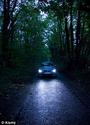 Lights on: Surrey is a hotbed for 'dogging' with people obviously preferring the more picturesque locations