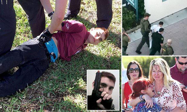 Florida shooter 'set off fire alarm' before killing 17
