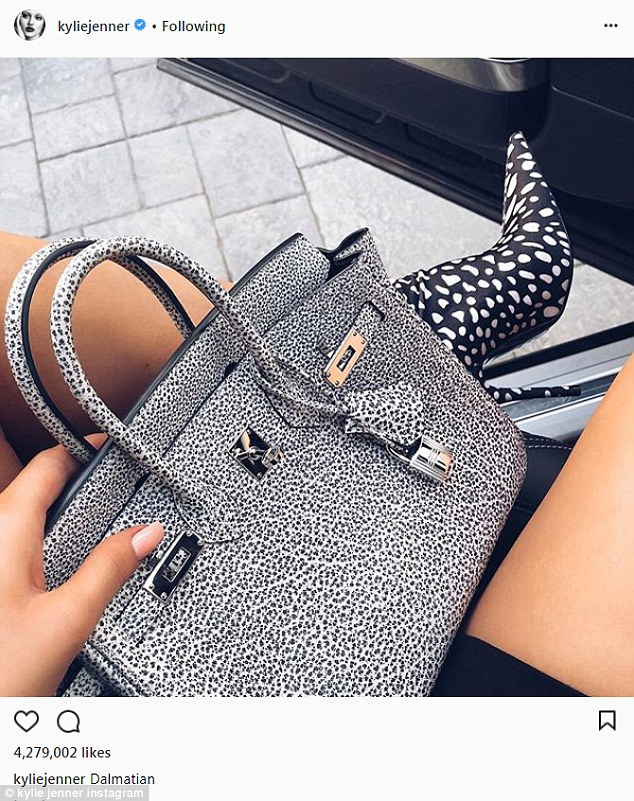 So many new things: And in another shot, she shared a new Hermes bag that she called 'Dalmatian'
