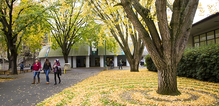 The prestigious Tree Campus USA honor recognizes the University's commitment to healthy trees and improved environment.