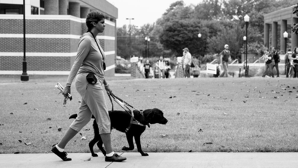 Ashley Jackson, a deaf-blind student at UT Martin, walks the campus with her guide dog Mr. Bunkers