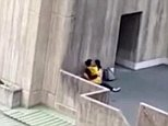 A pair of Asian university students have been filmed getting particularly amorous with each other in broad daylight atUniversity of New South Wales
