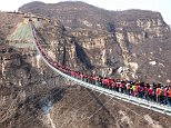Not for the faint hearted: The world's longest glass-bottomed bridge is loaded with tourists who've come to enjoy the view