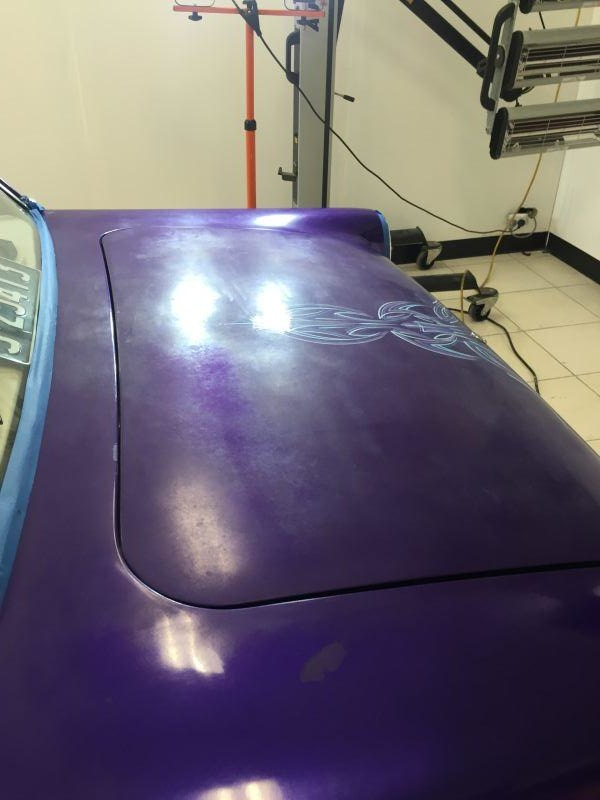 Correction and Modesta Paint Protection 3