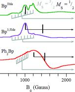 The Original CoII Heteroscorpionates Revisited: On the EPR of Pseudotetrahedral CoII