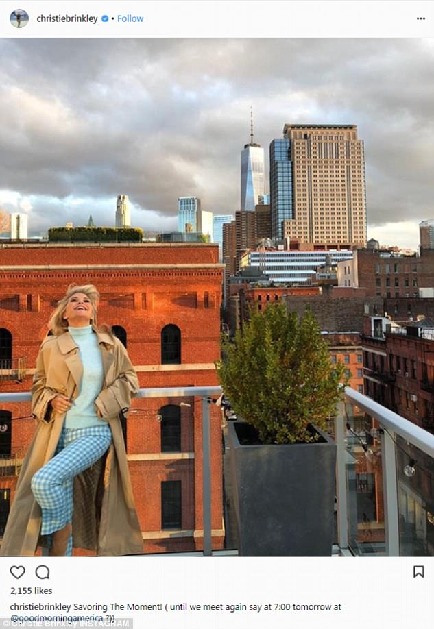 Glam goddess: Here she is seen on a roof with the NYC skyline behind her