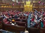 Peers voted by 316 votes to 245 for an amendment saying the Charter of Fundamental Rights should stay in place after 2019