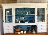 Tucked somewhere inside this cabinet is a common green snake - can you find it?