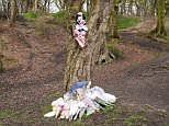 The newborn baby girl named Pearl by police was found dead two weeks ago. Today a detective chief inspector said the child could have been the product of rape or incest