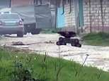 An armed robot (pictured) was used by Russian counter-terrorism forces as they attacked a jihadists stronghold in Dagestan