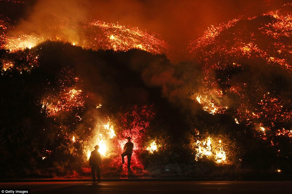 Ventura: In Ventura on Thursday morning, fire fighters continued to battle the ongoing Thomas fire which has so far covered 96,000 acres. Two fire fighters are pictured extinguishing its flames along the 101 Highway