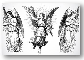 How are the angels fighting in this political climate?
