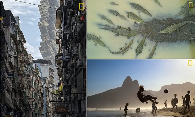 The stunning images featured in National Geographic's Travel Photographer of the Year
