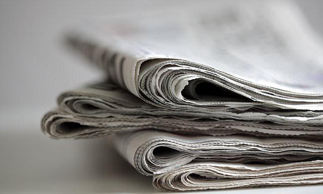 SUNDAY NEWSPAPER SHARE TIPS: Ashoka India Equity, Speedy Hire and Merlin