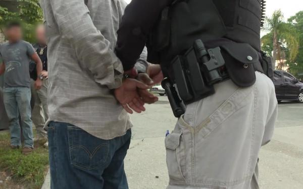 ICE Arrests 271 Across the State of Florida and Puerto Rico