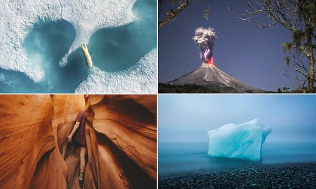 The stunning winners of a prestigious nature photo contest are revealed