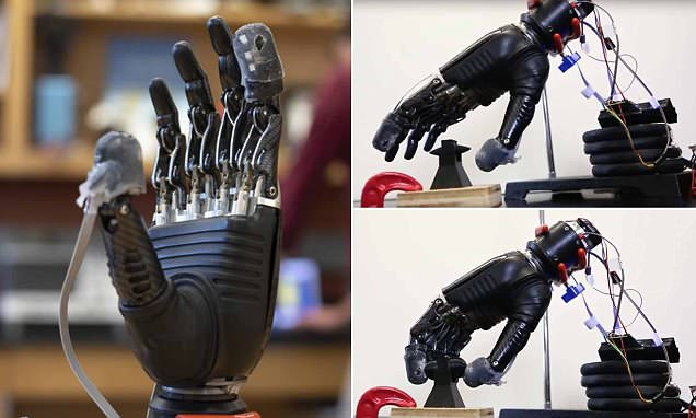 Prosthetic skin that can feel both pain and touch could help amputees avoid injury