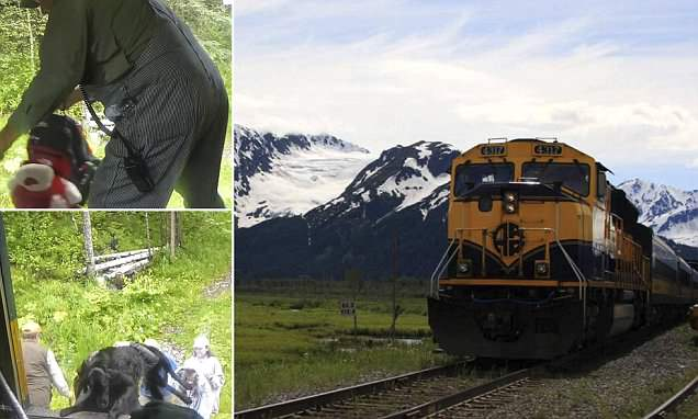 On board the Alaskan Hurricane Turn Train that passengers can flag down at any point on