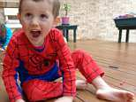 The bush search for William Tyrrell has taken a twist as investigators move to a new area just four kilometres from where the missing toddler was last seen alive