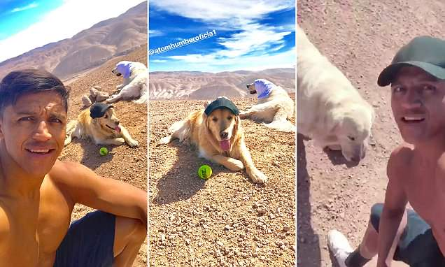 Manchester United star Sanchez is joined by his dogs as he trains in Chile ahead of the