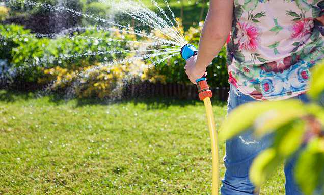 How much will my water bill be if I use my hose pipe every day?