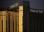 MGM Resorts International, which owns the Mandalay Bay hotel in Las Vegas, has asked a federal judge to dismiss any future lawsuits brought by 2017 massacre victims