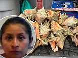 Diana Fiscal-Gonzalez (left), 30, was sentenced last week to 15 days in a Florida jail for taking 40 queen conchs in the Florida Keys