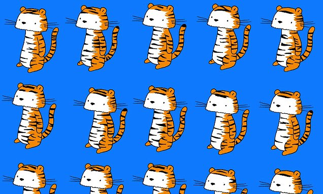 Puzzle challenges you to spot the tiger without the twin