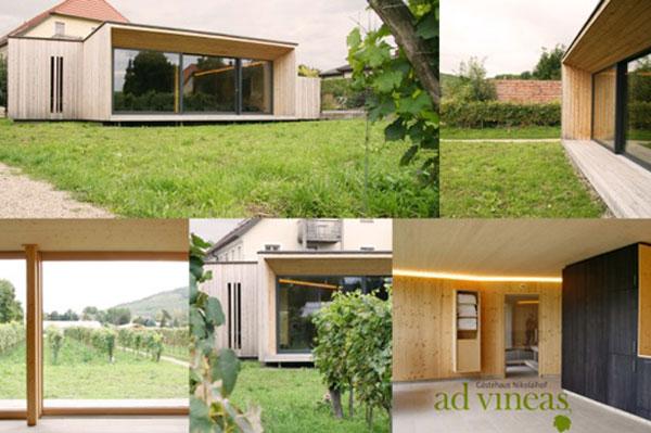 ad vineas
